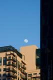 13052 Moon Over Melbourne II