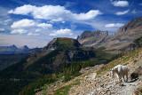 IMG_5004 Highline Trail.jpg