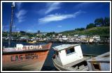 Boats and Palofito (stilt) Houses Along Harbor