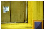 Yellow Window (or - Ni Con Color Brilla)