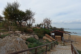 Fig Tree Bay