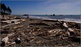 Ruby Beach on the Pacific Coast