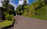 Walking Along a Road Just North of Soufrière