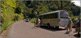Near Soufrière, St. Lucia