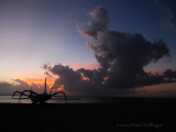 Sanur Sunrise 2009
