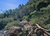 Yak & Devo below Waipo'o Falls