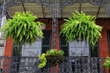 balcony gardens in the French Quarter