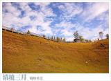 ¤T¤ë²M¹Ò¡i´¸®É¦h¶³°¸ÄÆ«B¡j March . Chingjing Farm