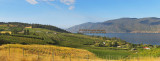 Okanagan Centre/Grey Monk Winery (8601-8645)