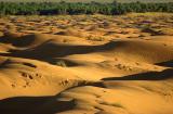 Dunes Ksar Ghilane 5