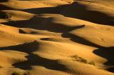 Dunes Ksar Ghilane 6