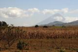 Plantacion de Maiz (Al Fondo el Volcan de Agua)