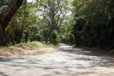La Ruta a la Cabecera Presenta Mucha Vegetacio
