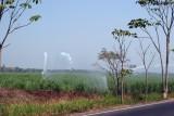 Sistemas de Riego de las Plantaciones de Caña