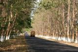 Ruta Entre Retalhuleu y Champerico