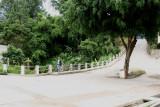 Calle de la Poblacion