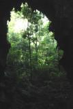 Vista Panoramica de una de los Ingresos  a la Cuava