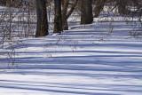 IMG_0008-tapis de neige-900.jpg