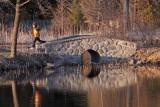 IMG_0844--un petit pont---900.jpg