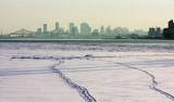 IMG_0090_vue du port de Montréal-900.jpg
