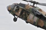 Army Blackhawk
