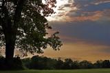 Caumsett Park