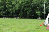 Camp 2009_ 09.jpg