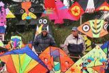 Buying A Kite