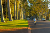 Morning cyclist