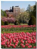 Boston Public Garden '06