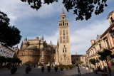 La cathédrale et la giralda