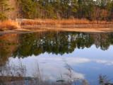 Sandy Bottom Pond