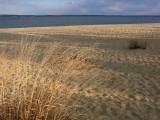Beach on James