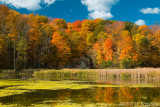 Kortright Conservation Center in Fall