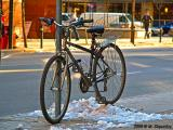 #6 Freezing in Snow