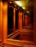 Just an Elevator