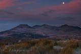 moon over moelwyn IMG_2081b.jpg