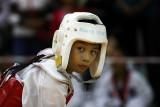 Taekwondo fighter