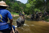 Crossing the river on the back of an elephant