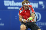 Quarter finals: David Ferrer (Spain)