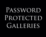 Password Protected Galleries