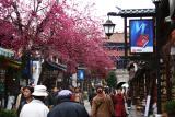 Old Town Center Of Dali (Dec 05)