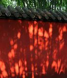 Shadows on the Red Wall (Aug 06)