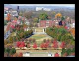 The fall colors of Bicentennial Park