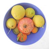 Fruit in purple bowl
