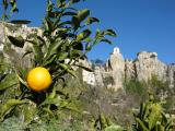 Oranges and bell tower Guadalest