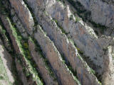 Ridges at Escales