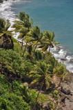 Martinique-040.jpg