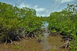 Martinique-057.jpg