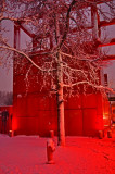 Rouge-241.jpg